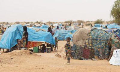 Gazdasági menekült vagy üldözött