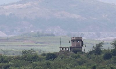 Demilitarizált övezet Észak-Korea és Dél-Korea között