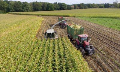 A mezőgazdasági tétel az egyik legnagyobb az EU költségvetésében