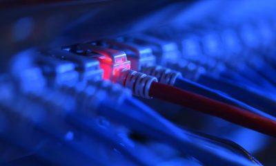 A terrorizmus elleni online felügyelet