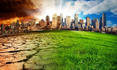 Környezeti szorongás