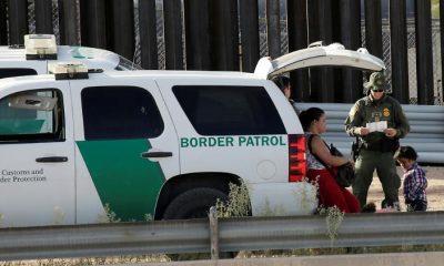 Illegális bevándorlás esetén DNS-profilok tervezése az USA-ban